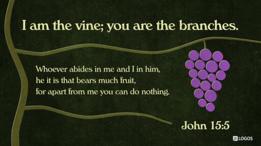 John 15:5 (NKJV) -