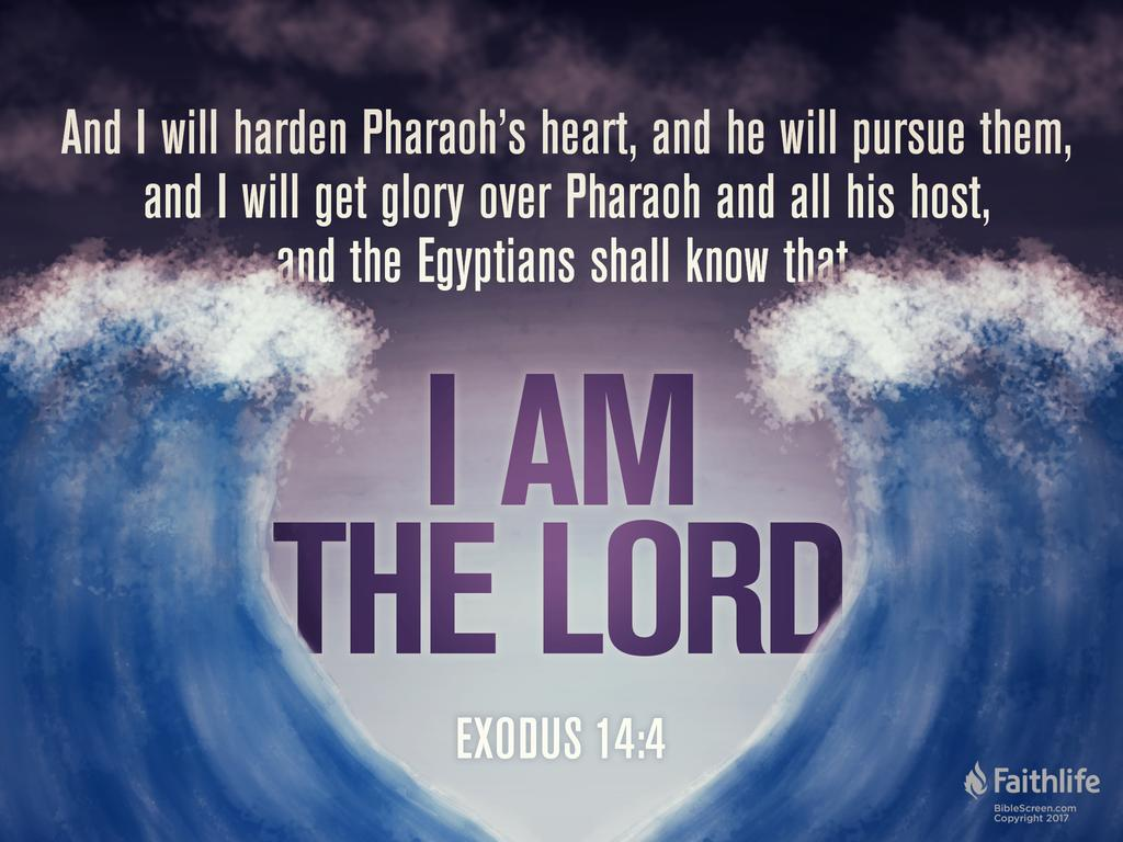 Exodus meaning of the word
