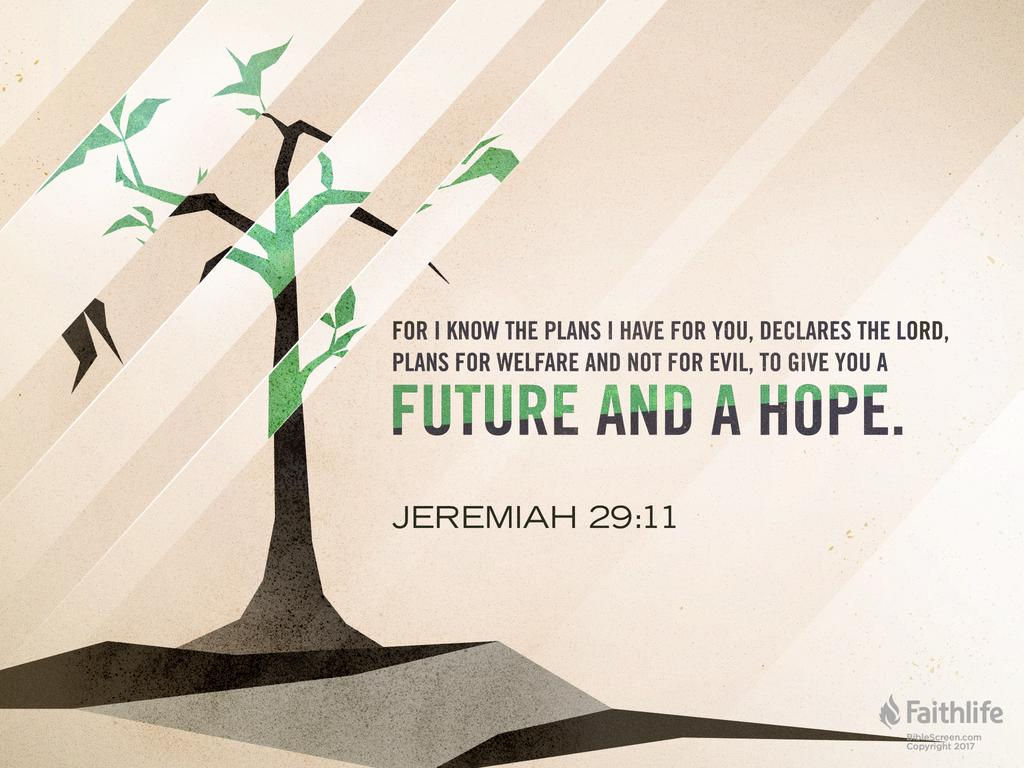 Conhecido Jeremiah 29:11 QK92